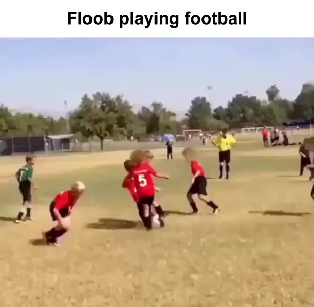 Watch and share Flube Football GIFs on Gfycat