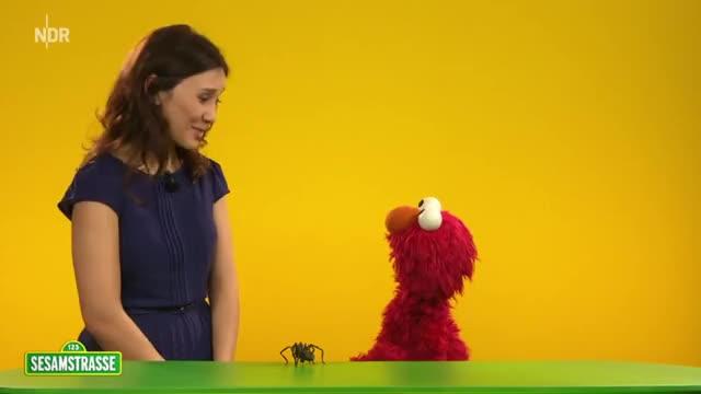 Sibel Kekilli und Elmo erklären: Mut | NDR