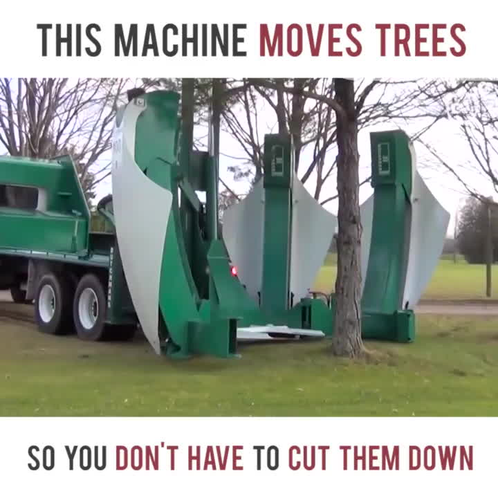 gifsthatendtoosoon, interestingasfuck, Machine moves trees the easy way GIFs