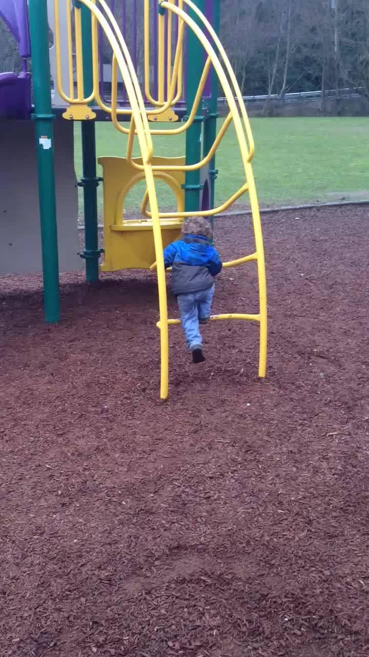 holdmyjuicebox, Toddler Fail GIFs