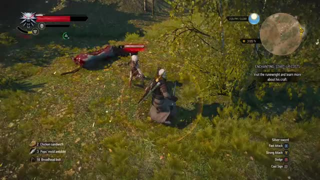 Watch this GIF by Gamer DVR (@xboxdvr) on Gfycat. Discover more Convertible Lio, TheWitcher3WildHunt, xbox, xbox dvr, xbox one GIFs on Gfycat