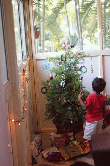 Christmas Celebration – Musical evening with Savio GIFs
