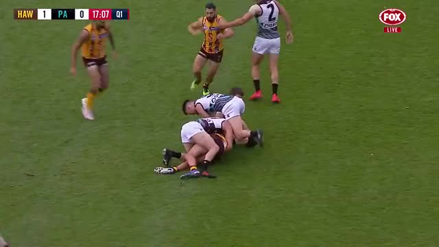 Watch and share Port Adelaide Power GIFs and Hawthorn Hawks GIFs on Gfycat
