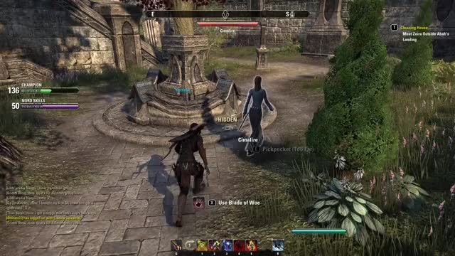 Watch and share Elder Scrolls Midday Assassination GIFs by Kelzack on Gfycat