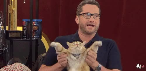 Watch Roosterteeth gifs. GIF on Gfycat. Discover more related GIFs on Gfycat
