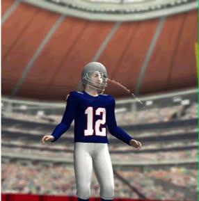 Patriots' season - GIFs