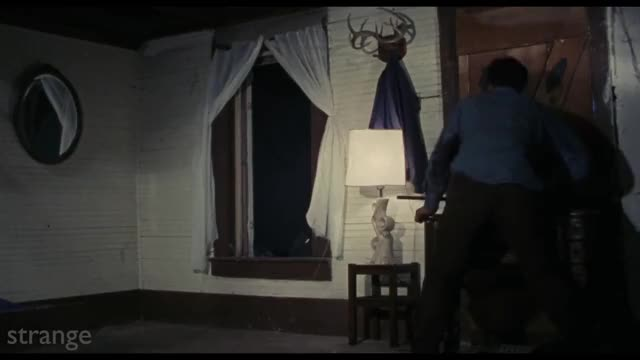 Watch Caught GIF on Gfycat. Discover more Horror Films, Horror Movies, Scary Films, the evil dead, the evil dead 1991, the evil dead best scene, the evil dead eye gouge, the evil dead eye scene, the evil dead jump scare, the evil dead scary scene GIFs on Gfycat
