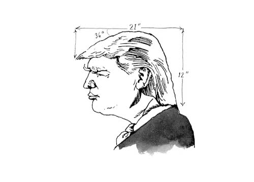 Watch and share Donald Trump GIFs and New Yorker GIFs on Gfycat