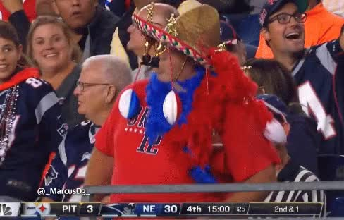 Watch and share New England Patriots Fan GIFs by MarcusD on Gfycat