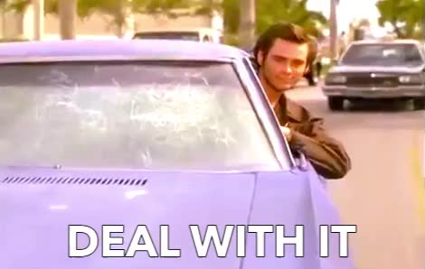 DEAL WITH IT, car, carrey, cars, cool, deal, deal with it, it, jim, life, sunglasses, thug, transportation, with, Ace Ventura - Deal with it GIFs