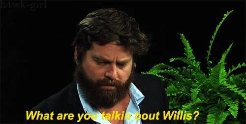 bruce willis, zach galifianakis, what you talkin bout willis GIFs