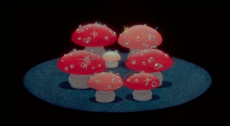 NUTCRACKER MUSHROOMS GIFs