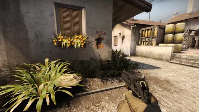 Watch and share Csgo GIFs by amitkilo on Gfycat