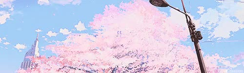 Watch and share Cherry Blossom Tree GIFs and 5 Cm Per Second GIFs on Gfycat