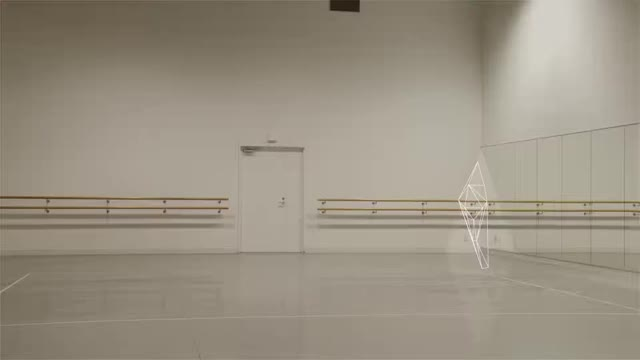 Watch and share Ballet Rotoscope GIFs by alternations on Gfycat