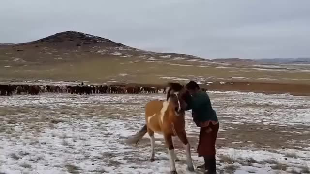 Watch HMB while I judo leg sweep this horse (reddit) GIF on Gfycat. Discover more HumansAreMetal, gif, judo GIFs on Gfycat