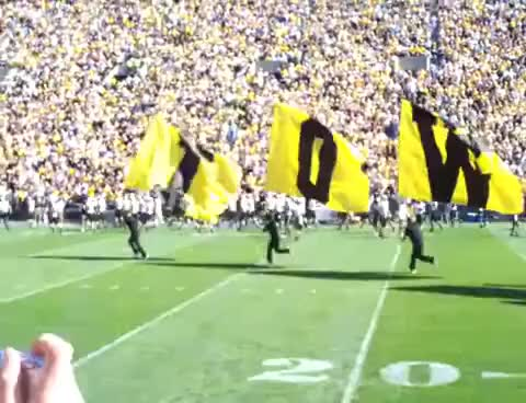 Watch and share Hawkeys GIFs and Iowa GIFs on Gfycat