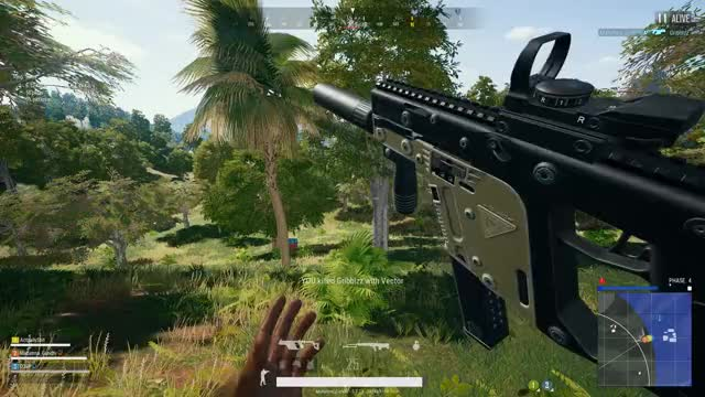 Watch and share Vlc-record-2019-02-15-19h41m30s-PLAYERUNKNOWN GIFs on Gfycat