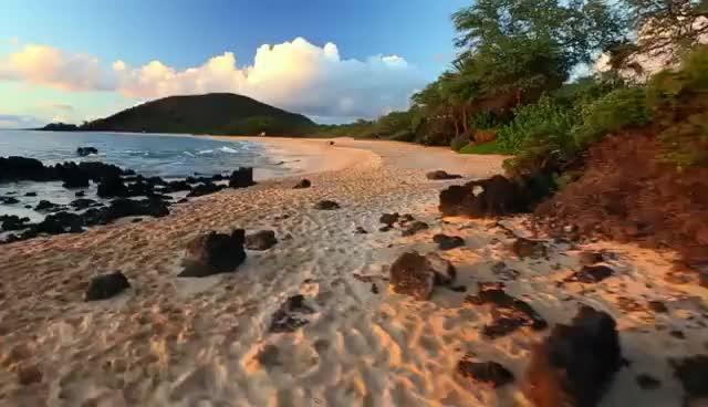 Watch and share Maui GIFs on Gfycat