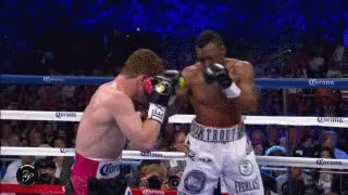 Watch Canelo Azucar. GIF on Gfycat. Discover more related GIFs on Gfycat