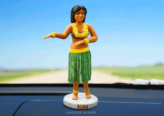 Watch and share Dashboard Hula Girl Grande GIFs on Gfycat