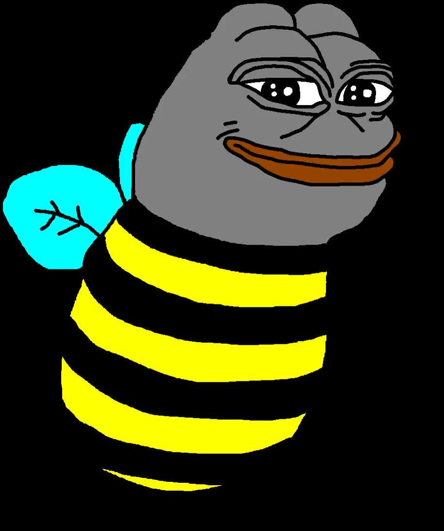 bee, bees, meme, memes, pepe, bee GIFs