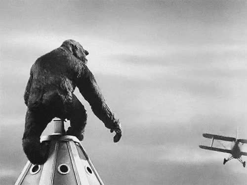 Watch and share King Kong GIFs on Gfycat