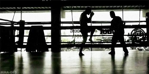 aka, boxing, cain velasquez, gif, mixed martial arts, mma, sports, ufc, mma-gifs GIFs