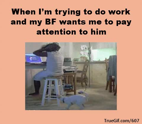 Watch and share Pay Attention To Me GIFs on Gfycat