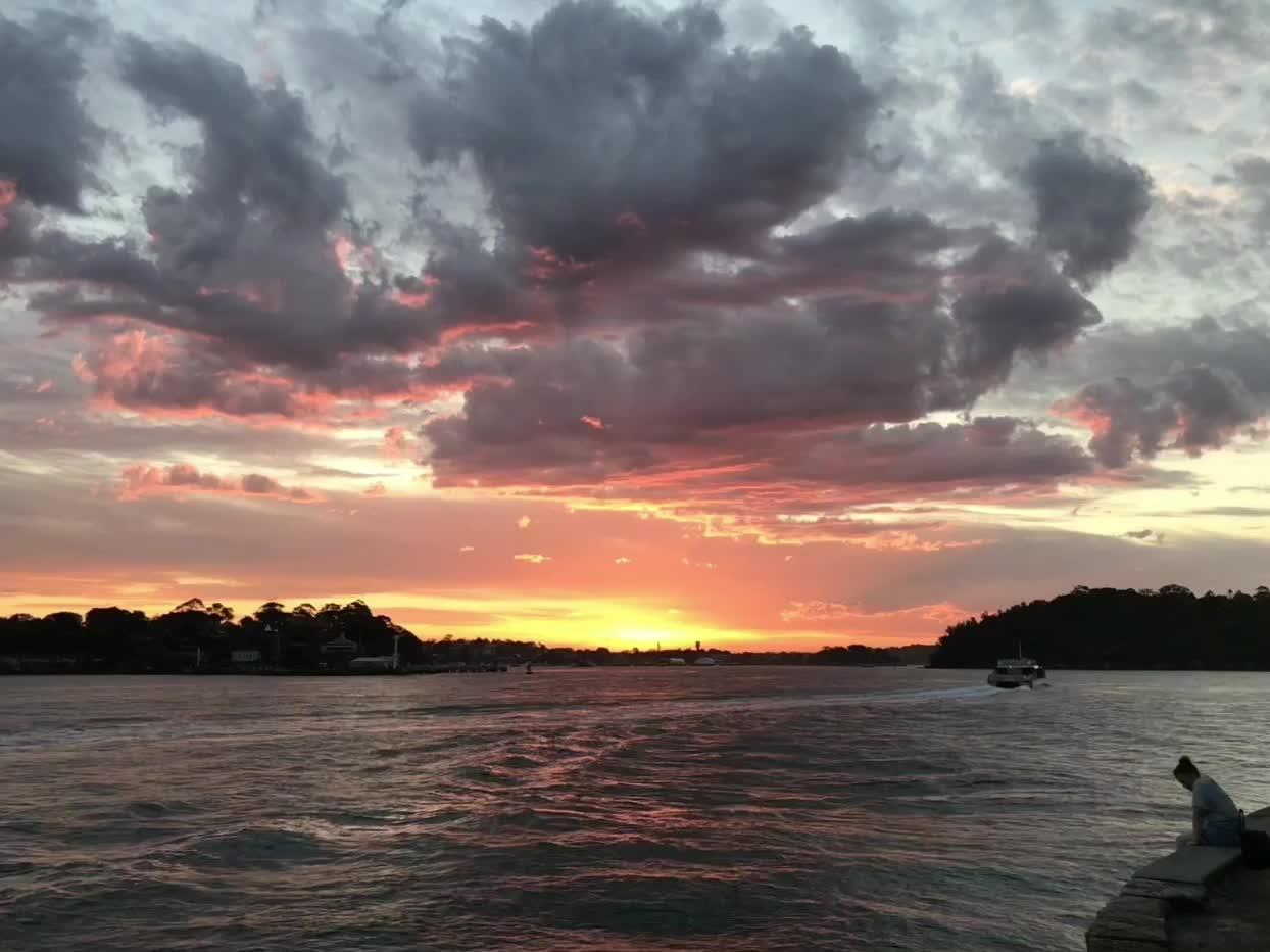 IMG_2945, Sydney Harbour GIFs