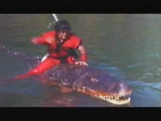 Watch this trending GIF on Gfycat. Discover more 1980s, Dragon Ball Z, Dutch, Taiwan, VHS, Xin qi long zhu, eighties, rental, tape, video GIFs on Gfycat