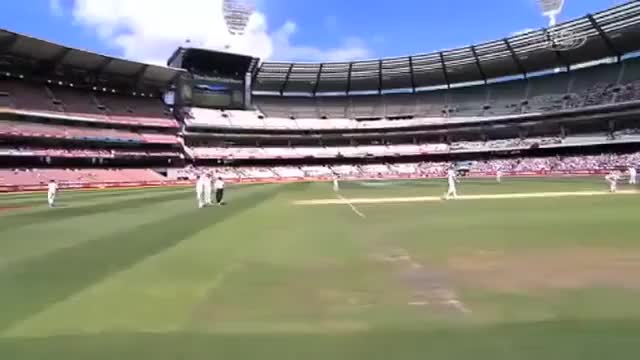 Watch cricket GIF on Gfycat. Discover more related GIFs on Gfycat
