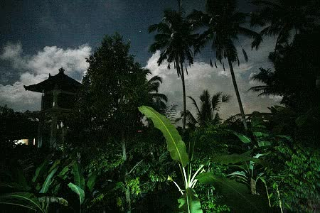 Watch bali-night.gif GIF on Gfycat. Discover more related GIFs on Gfycat