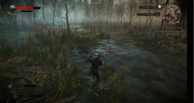 Watch and share Witcher 3 GIFs on Gfycat