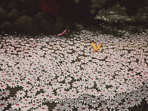 butterfly, daisy, different, flower, flowers, my world, sweet,  GIFs