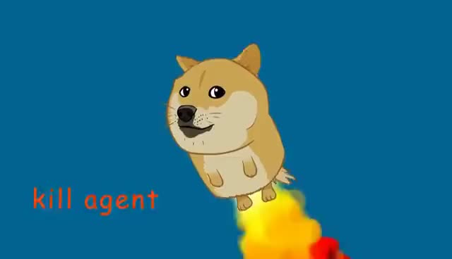 Watch and share Doge GIFs on Gfycat