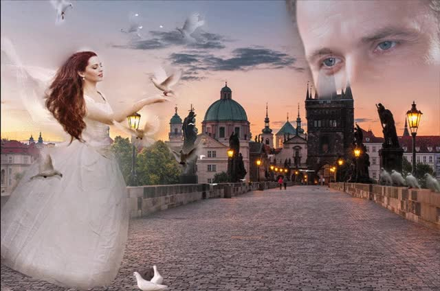Watch and share Плейкаст «Любовь Словно Голуби – Вольная Птица,» GIFs on Gfycat