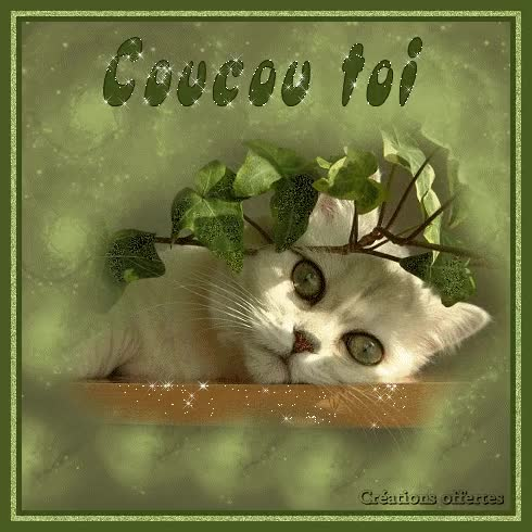 Watch and share Image Trouvée Sur Le Net - Merci À Son(sa) Créateur(trice) GIFs on Gfycat