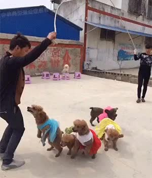 -WarHounds-, Jump-roping with his friends.. GIFs