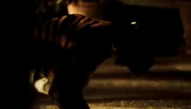 Watch and share ROBERTO CAVALLI PARFUM - THE FILM GIFs on Gfycat