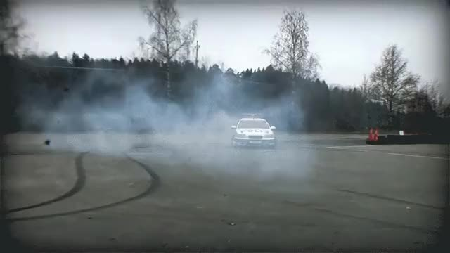 Watch and share Swedish Police GIFs by thb on Gfycat