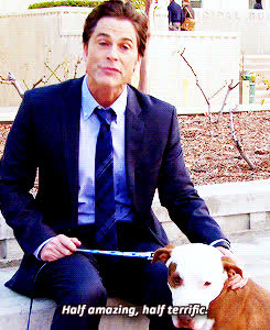 amazing, chris traeger, parks and rec, parks and recreation, rob lowe, terrific, chris traeger GIFs