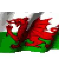 Watch and share Wales Flag animated stickers on Gfycat