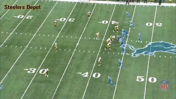 Watch and share Haden-lions-2 GIFs on Gfycat