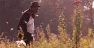 Watch and share Shawshank GIFs on Gfycat