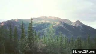 Watch and share The Taiga Biome GIFs on Gfycat