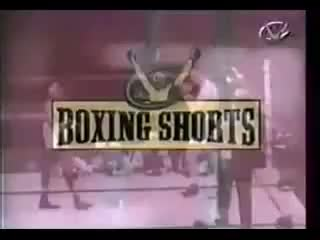 Watch Sugar Ray Robinson vs Gene Fullmer II GIF on Gfycat. Discover more championship, comeback, fullmer, gene, greatest, hook, knockdown, knockout, ko, left, middleweight, perfect, punch, ray, regain, robinson, sugar, title GIFs on Gfycat