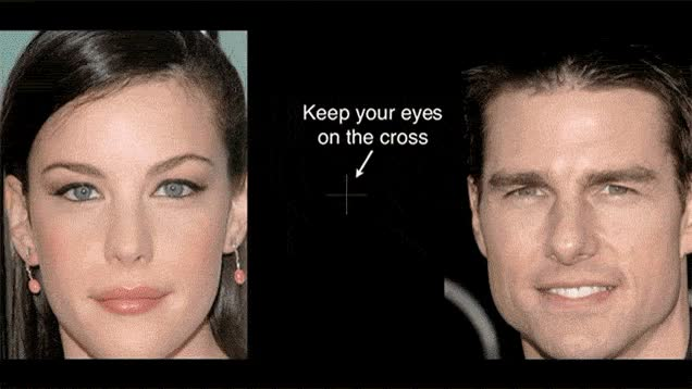 Watch Freaky optical illusion (reddit) GIF on Gfycat. Discover more liv tyler, tom cruise GIFs on Gfycat