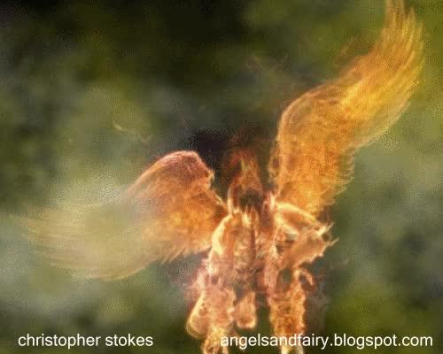 Watch and share Angel GIFs on Gfycat