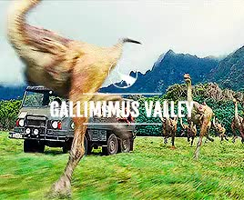 Watch this trending GIF on Gfycat. Discover more Gallimimus, Jurassic World, Mosasaurus, Pteranodon, Tyrannosaurus Rex, apatosaurus, jwedit GIFs on Gfycat